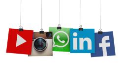 Social Marketing Courses and Qualifications